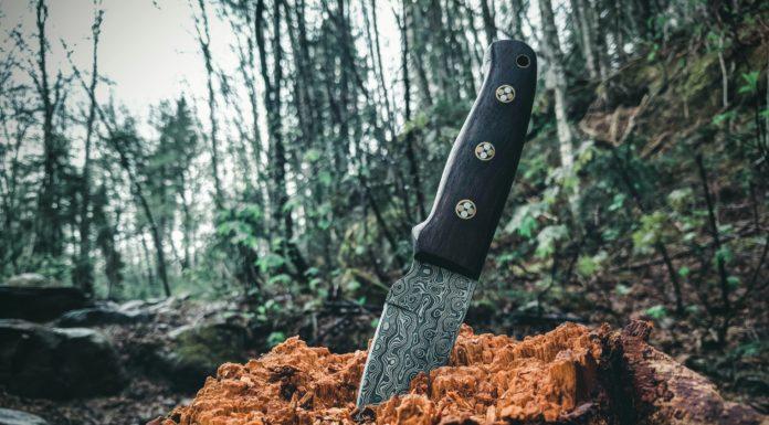 Best EDC Knife Under $30