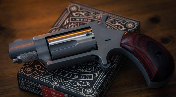 Best Gun Safe Under $300