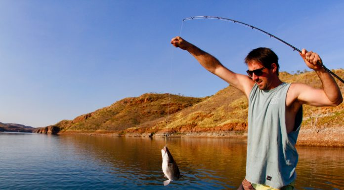 Best Fishing Rod Under $100