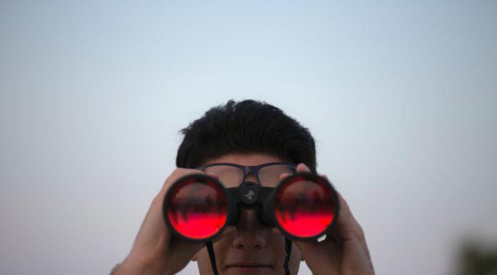 Best Binoculars Under $500