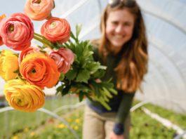 Spring Gift Basket Ideas